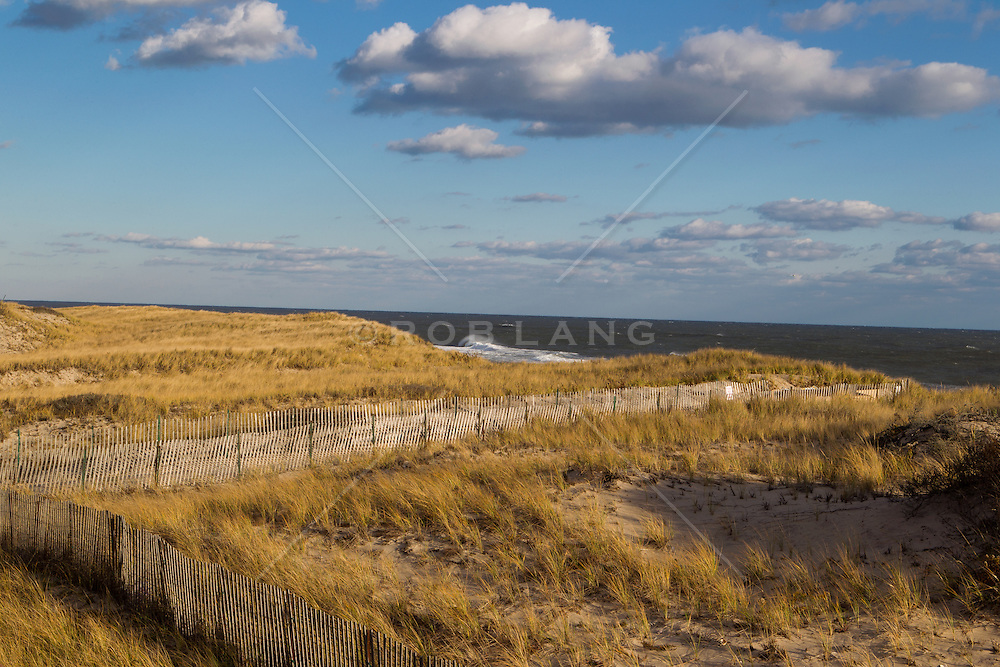 sunset on the sand dunes at the beach in Amagansett, NY