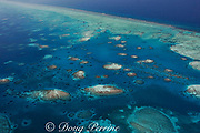 aerial view of southern Belize barrier reef, showing Gladden Spit and Silk Cayes Marine Reserve, off Placencia, Belize, Central America ( Caribbean Sea )