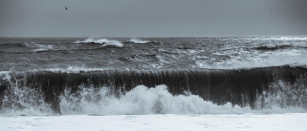 Dramatic dangerous waves of Atlantic Ocean onto black volcanic sand beach Reynisfjara near the village Vík i Myrdal, South Iceland