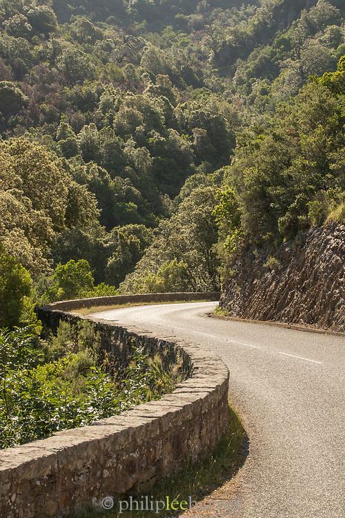 Road between hills and trees, Calanches de Piana, Corsica, France