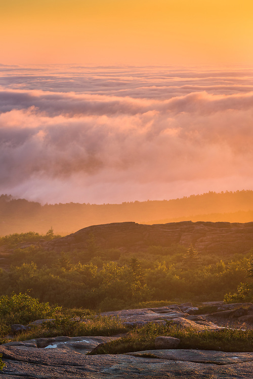 The fog rolls in beneath the summit of Cadillac Mountain just before dawn.  Acadia National Park, Maine.
