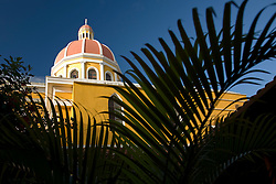 Central America, Nicaragua, Granada.  Belltower of Cathedral of Granada viewed from garden courtyard with ferns.