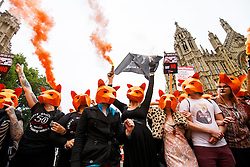 © Licensed to London News Pictures. 14/07/2015. London, UK. Animal rights campaigners protesting against government plans to bring back fox hunting, ahead of the vote in the House of Commons on Tuesday, July 14, 2015 outside House of Parliament in London. Photo credit: Tolga Akmen/LNP