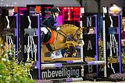 Diede Meulepas - Brunnie<br /> Indoor Brabant 2017<br /> © DigiShots