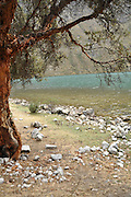 Peru, flowing river landscape