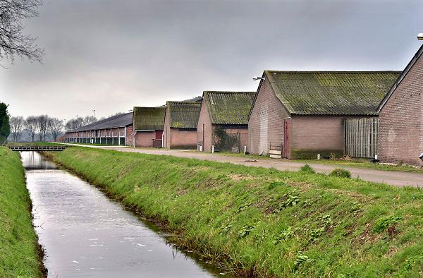 Nederland, Boekel, 10-2-2018Het mega-varkensbedrijf van Machiel Coppens in Boekel in Noord-Brabant . De 22.000 varkens zorgen voor veel overlast.  De voederrsilo's  op de foto zijn buiten het bouwvak gebouwd en daarmee illegaal. Coppens ligt voortdurend in de clinch met gemeenteraad en rechters.Foto: Flip Franssen