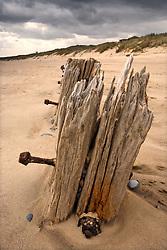 July 21, 2019 - Wooden Posts On Beach (Credit Image: © John Short/Design Pics via ZUMA Wire)