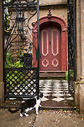 An entry to a historic home on Legare Street in Charleston, SC.
