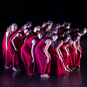 NZ School of Dance, client access
