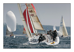 Bell Lawrie Scottish Series 2008. Fine North Easterly winds brought perfect racing conditions in this years event. GBR66R, Sail4Cancer, Tino Hyland/Nigel Biggs, Royal St. George YC, J109