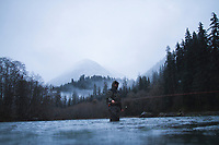Fly fishing for steelhead on the Quinault River. Olympic National Park, WA.