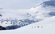 a group of tourists hiking on Danco Island or Isla Dedo an island off Antarctica, 1 nautical mile (2 km) long lying in the southern part of Errera Channel,