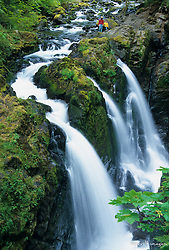 United States, Washington State, Olympic National Park. Sol Duc Falls waterfall viewed from bridge.