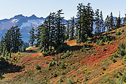 Admire views of Cascades peaks and red and yellow fall foliage colors on Park Butte Trail in Mount Baker Wilderness, Mount Baker-Snoqualmie National Forest, Washington, USA.
