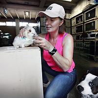 Nederland, Amsterdam , 17 juli 2014.<br /> Michele Polman, voorzitter van Konijnenopvang Amsterdam verzorgt een ziek konijn.<br /> Foto:Jean-Pierre Jans