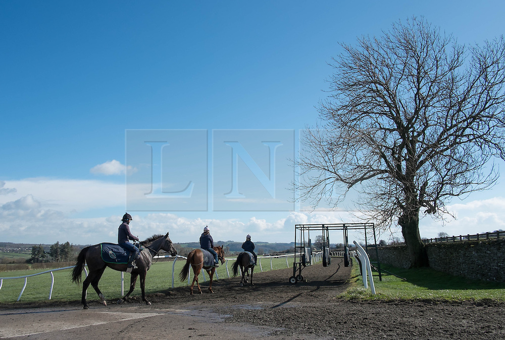 © Licensed to London News Pictures. 22/03/2014<br /> <br /> Middleham, North Yorkshire<br /> <br /> Race horses exercise in the morning at the Mark Johnston stables in Middleham, North Yorkshire. Race horses have been trained in Middleham for over 200 years using the extensive gallops on the high moor. There are currently 15 stables based around the small Yorkshire village.<br /> <br /> Photo credit : Ian Forsyth/LNP