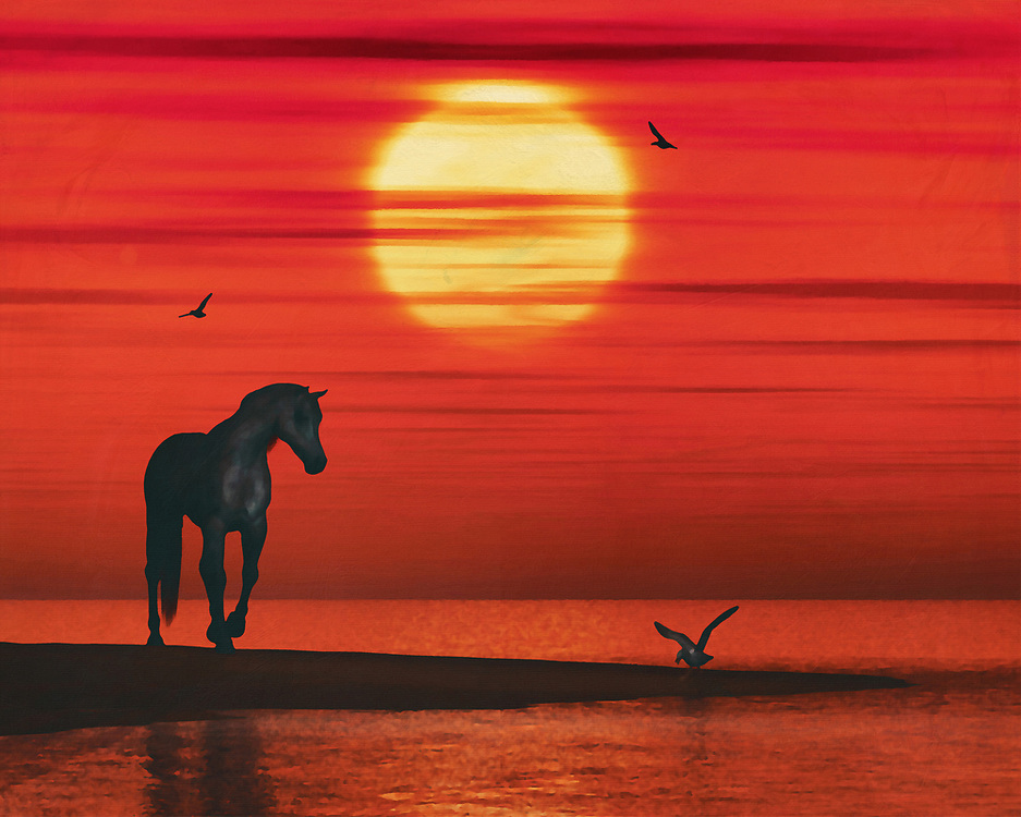 A horse near the sea has spotted a seagull and is cautiously stepping towards it; it is sunset and the evening is turning red.This atmospheric work can be purchased in various materials and formats. –<br /> -<br /> BUY THIS PRINT AT<br /> <br /> FINE ART AMERICA / PIXELS<br /> ENGLISH<br /> https://janke.pixels.com/featured/a-horse-and-a-seagull-jan-keteleer.html<br /> <br /> <br /> WADM / OH MY PRINTS<br /> DUTCH / FRENCH / GERMAN<br /> https://www.werkaandemuur.nl/nl/shopwerk/Een-paard-en-een-zeemeeuw/801655/132?mediumId=1&size=70x55<br /> –<br /> -