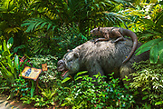 Prehistoric exhibit at the Singapore Zoo, Singapore, Republic of Singapore