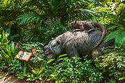 Prehistoric exhibit at the Singapore Zoo, Singapore, Republic of Singapore