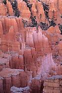Hoodoos in Bryce Canyon Bryce Canyon National Park, UTAH