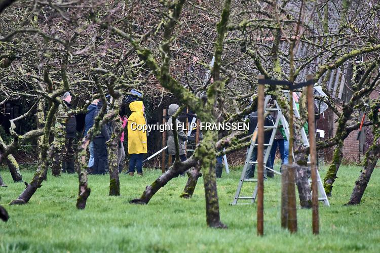 Nederland, Winssenl, 16-3-2019In de regio vinden veel activiteiten plaats in het kader van de NLdoet actiedag. In de boomgaard achter de kerk gaan vrijwilligers in de regen de bomen snoeien .Foto: Flip Franssen
