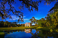 Spanish moss hanging from live oak trees at the Drayton Hall plantation, Charleston, South Carolina
