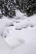 Zamarznięty potok w Dolinie Strążyskiej