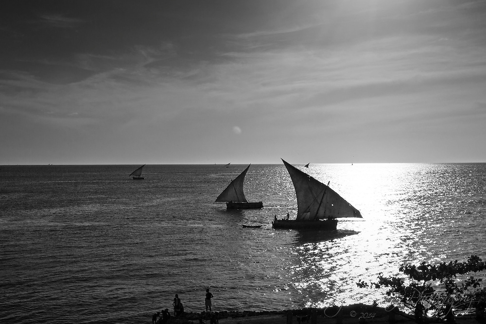 The fishing dows out trawling the waters in front of the Africa House in Stone Town, Zanzibar.