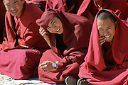 While visiting a monastery in Lhasa, TIbet, I was captivated with the playfulness and happiness these young monks displayed, notice the modern watch on the wrist of the monk in the middle.