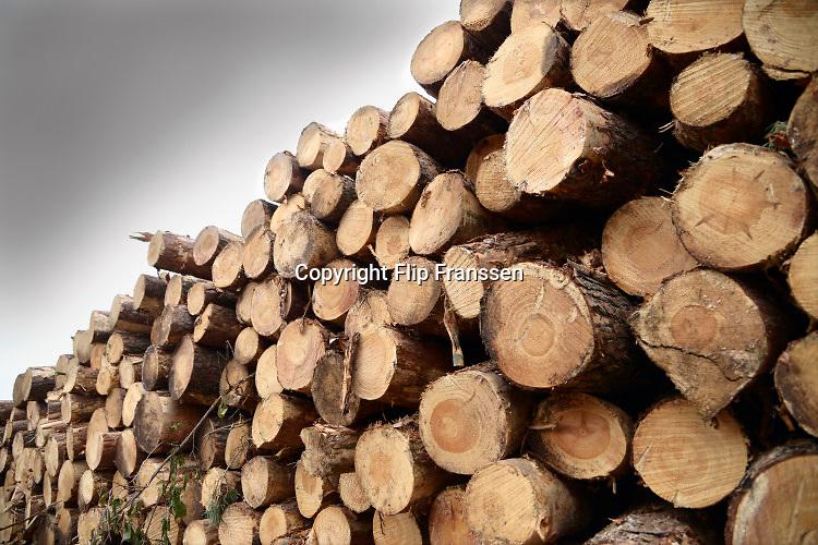 Nederland, Groesbeek, 18-04-2019Afgelopen weken zijn er in de bossen rond Groesbeek veel bomen gekapt . Met harvesters, machines die de bomen in een keer kunnen zagen, onttakken en in stukken verdelen, worden open plekken in het bos gemaakt. De grond wordt omgewoeld en stronken uitgefreesd. Staatsbosbeheer en natuurmonumenten noemen dit oogsten van hout noodzakelijk om de biodiversiteit in de bossen te herstellen en ruimte te geven voor andere soorten flora en fauna, planten en dieren. Er is veel kritiek op het grootschalig kappen van bomen in de bossen..Foto: Flip Franssen