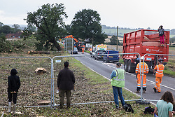 Anti-HS2 activists observe HS2 workers felling a mature oak tree alongside the Fosse Way after fellow activists had occupied three trees and a trailer being used to transport wood chip in order to try to protect the trees from works in connection with the HS2 high-speed rail link on 24th August 2020 in Offchurch, United Kingdom. The controversial HS2 infrastructure project is currently expected to cost £106bn and will destroy or significantly impact many irreplaceable natural habitats, including 108 ancient woodlands.