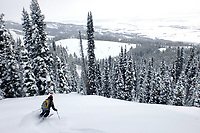 Cory Hatch descends an open slope during a backcountry ski excursion Saturday morning in the Big Hole Mountains west of Teton Valley. Steady snow is expected in the extended forecast through the weekend.