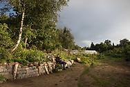 Bahrenfelder Luthergarten