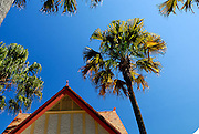Old tiled roof and palm trees.Circular Quay, Sydney, Australia