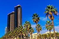 Harbor Drive, San Diego, California USA.
