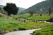 Israel, Galilee, Zippori National Park Wadi Zippori