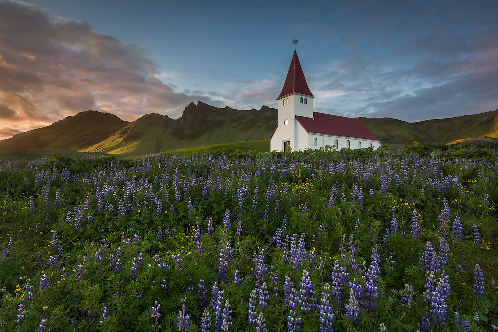 The church in Vík í Mýrdal lies nestled among the lupins as the sun slowly sets behind the hills.