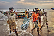 fishermen are carrying the daily fish catch ashore