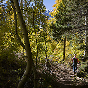 The Fall season in the Eastern Sierras is one of the most beautiful seasons to visit. Hiking the Parker Lake trail just north of the June Lakes.