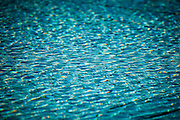 USA, Oregon, Salem, State Capitol State Park, abstract of fountain pool.