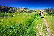 Hiking at Scorpion Ranch, Santa Cruz Island, Channel Islands National Park, California USA