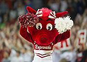 Feb 16, 2013; Fayetteville, AR, USA; The Arkansas Razorbacks mascot Sooie performs during a game against the Missouri Tigers at Bud Walton Arena. Arkansas defeated Missouri 73-71. Mandatory Credit: Beth Hall-USA TODAY Sports