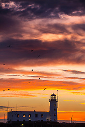 © Licensed to London News Pictures. 12/02/2019. Scarborough UK. Birds fly over Scarborough lighthouse at dawn this morning on the Yorkshire coast. Photo credit: Andrew McCaren/LNP