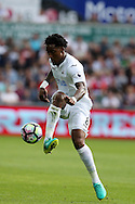 Leroy Fer of Swansea city in action. Premier league match, Swansea city v Chelsea at the Liberty Stadium in Swansea, South Wales on Sunday 11th Sept 2016.<br /> pic by  Andrew Orchard, Andrew Orchard sports photography.