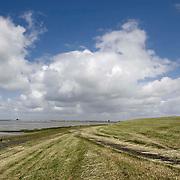 Nederland Zaamslag gemeente Terneuzen  19 juni 2010 20100619      .. Serie landschappen provincie Zeeland. Zeeuws-Vlaanderen, landschap dijk en  westerschelde   , stijging zeespiegel, stijgt, stil, stilleven, stilte, stock, stockbeeld, streek, sunny, sustainable, terrein, typerend, typical dutch landscape, typisch hollands, typisch hollands landschap, typische, uitgestrektheid, uitzicht, uniek, unieke, veiligheid, vergezicht, vergezichten, verte, vrij, vrijheid weer, waaien, water, water level, waterbeheer, Waterbeheerplan, watergang, waterhuishouding, waterkering, waterkeringen, Waterkeringen, waterlevel, watermanagement, waterniveau, waterpeil, waterplan, waterproblematiek, waterspiegel, waterstaatkundige, waterstand, watersysteem, waterveiligheid, waterveiligheid en gebiedsontwikkeling, waterwerken, weersomstandigheden, wei, weide, weidegang, weiland, weiland. Landscape, westerschelde, westeschelde, wijdheid, wijds, wijdsheid, wind, wit, witte, wolk, wolken, wolkenpartij, zee, zeeland, zeespiegel, zeespiegelstijging, zeeuws vlaanderen, zeeuws-vlaanderen, zeewaterniveau, zeewering, zo vrij als een vogel, zonnig, zonnige dag, zware, zwitserleven gevoel ..Foto: David Rozing