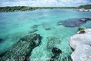 Xel-Ha Lagoon, before development as a tourist park, Yucatan Peninsula, Mexico ( Caribbean Sea / Western Atlantic Ocean )