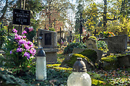 A squirrel sits on a gravestone in Rakowicki cemetery in Krakow, Poland 2019.