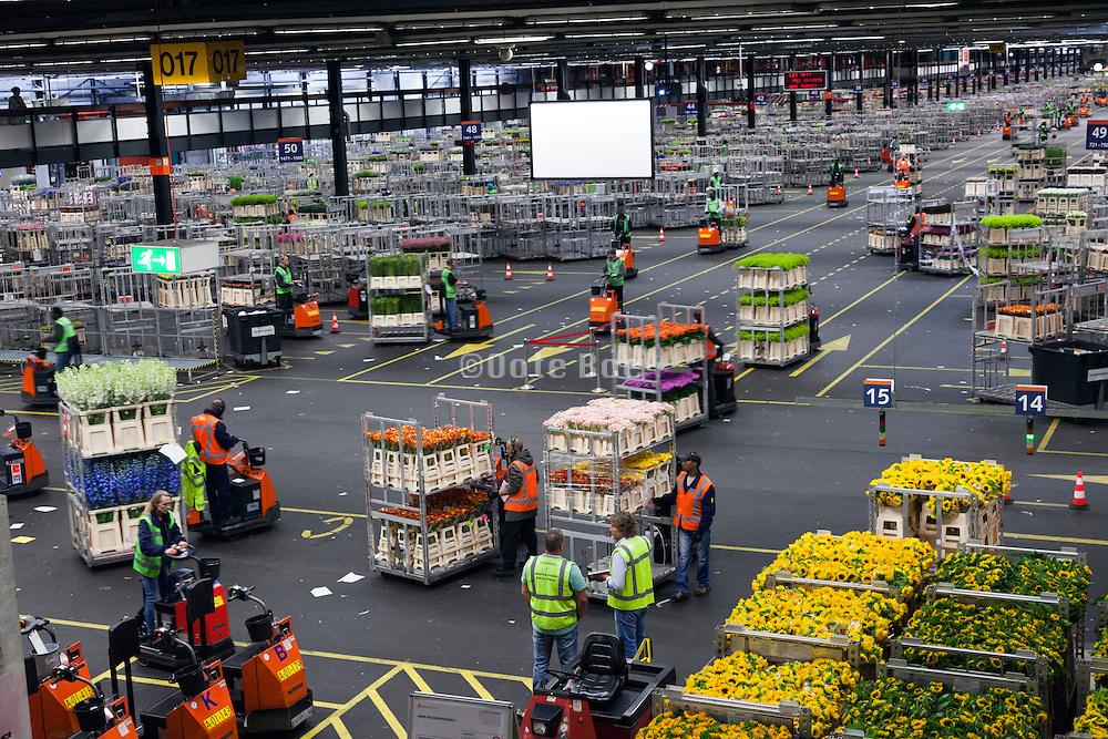 flower tranport inside the large warehouse hall of FloraHolland Aalsmeer Netherlands
