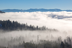 """""""Fog Over Truckee 2"""" - Photograph of low lying fog over Truckee, California and Donner Lake."""