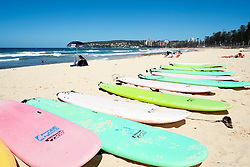 Surfboards lying on beach at Manly Beach in Australia